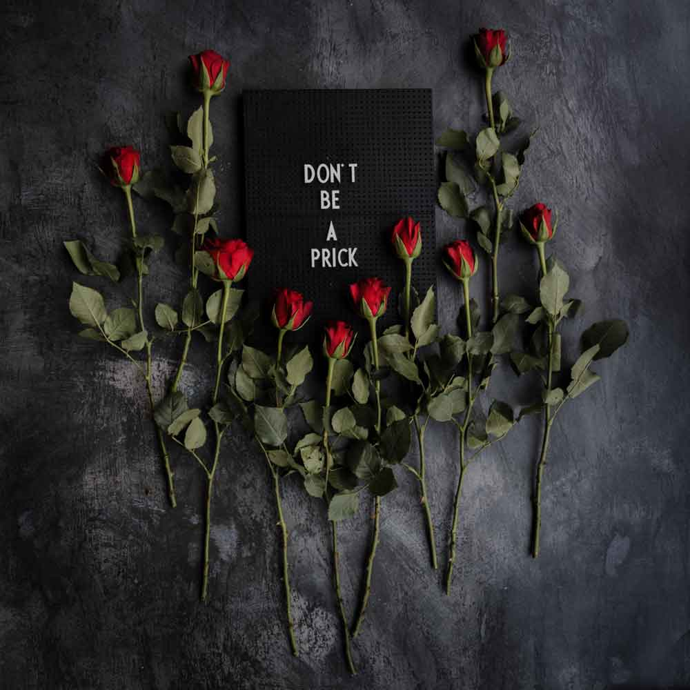 don't be a prick sign surrounded by roses on a black background unsplash sensi